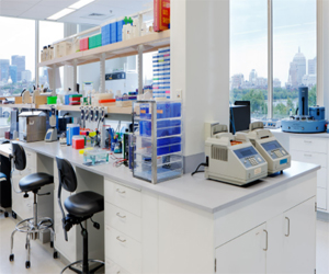 Adapt Existing Offices into Laboratory Spaces