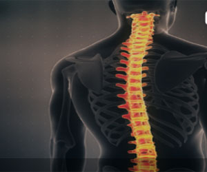 Central Nervous System Disorders  Therapeutics