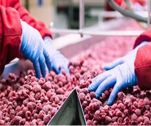 Essential Food Safety Training Updates for Frontline Employees