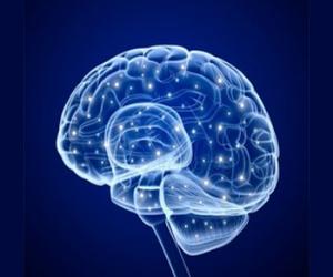 International Conference on Neurology & Neuroscience